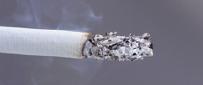 Cigarette Odor